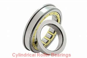 Osborn Load Runners 9754300 Cylindrical Roller Bearings