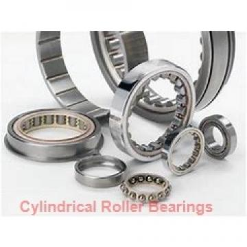 American Roller HCS 247 Cylindrical Roller Bearings
