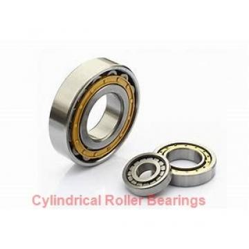 American Roller CD 218 Cylindrical Roller Bearings