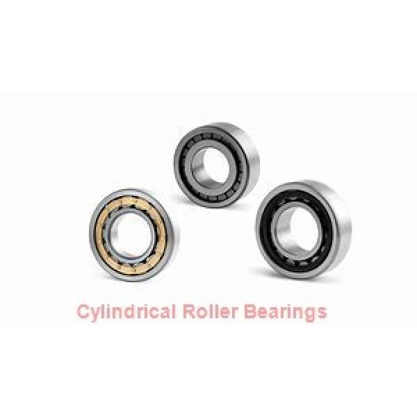 Osborn Load Runners 9584300 Cylindrical Roller Bearings #2 image